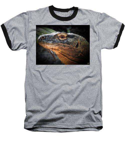 There Be Dragons, No. 5 Baseball T-Shirt