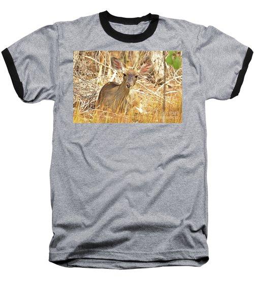 Thicket Baseball T-Shirt