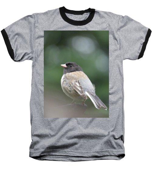 This Little Bird 2 Baseball T-Shirt by Brooks Garten Hauschild