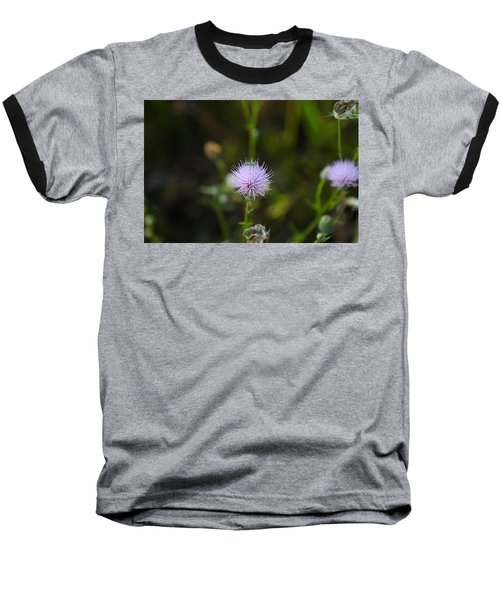 Thistles Morning Dew Baseball T-Shirt by Christopher L Thomley