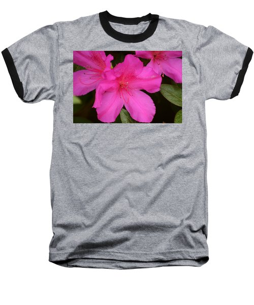 Three Azaleas Baseball T-Shirt by Warren Thompson