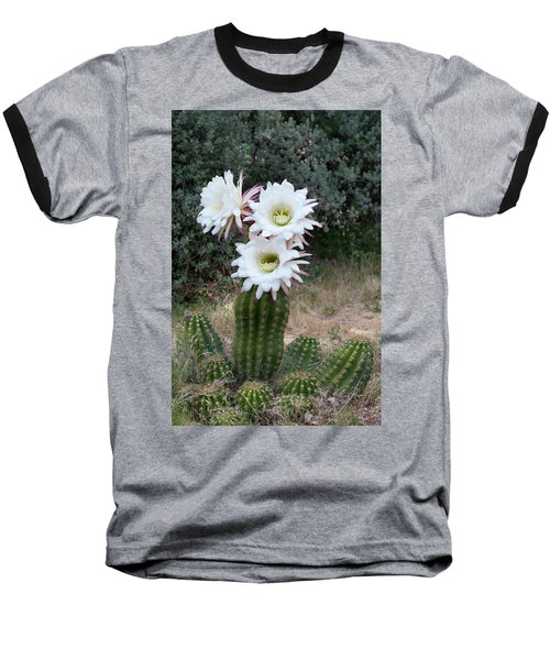 Three Blossoms Baseball T-Shirt
