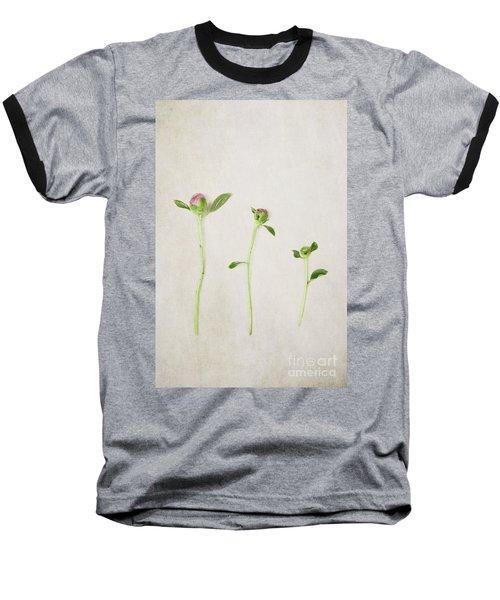 Three Buds Baseball T-Shirt by Stephanie Frey