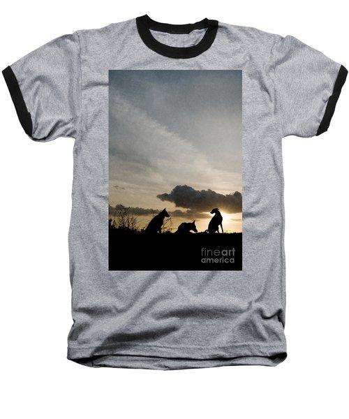 Three Dogs At Sunset Baseball T-Shirt