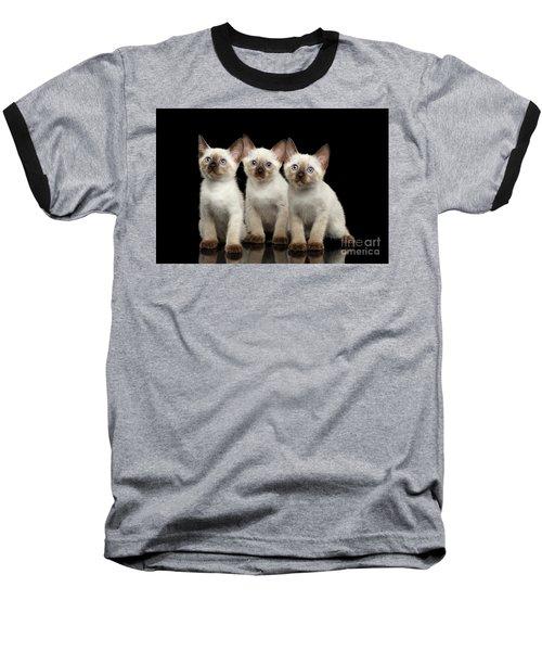 Three Kitty Of Breed Mekong Bobtail On Black Background Baseball T-Shirt