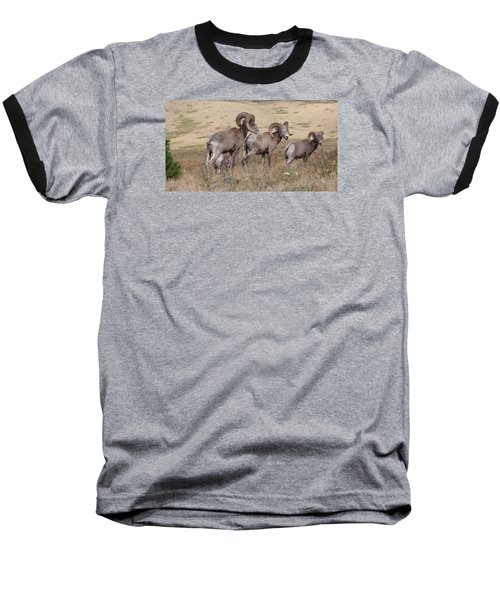 Baseball T-Shirt featuring the photograph Three Of A Kind by Fran Riley