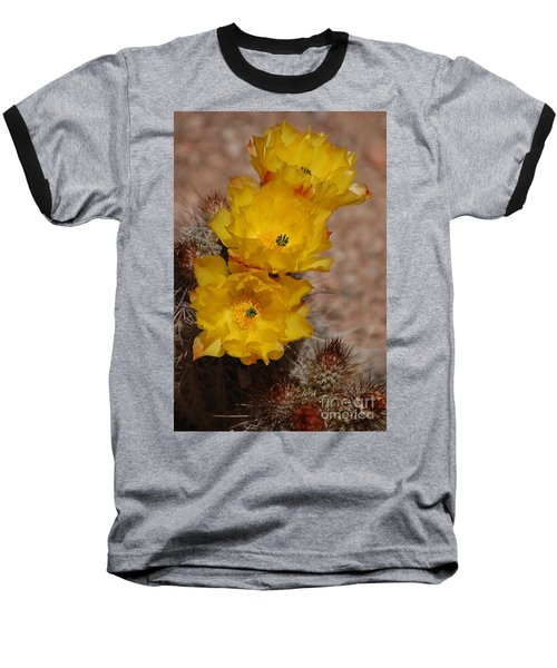 Three Yellow Cactus Flowers Baseball T-Shirt