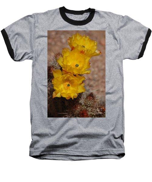 Three Yellow Cactus Flowers Baseball T-Shirt