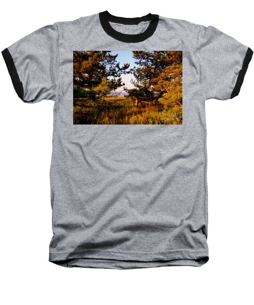 Through The Pine Grove Baseball T-Shirt