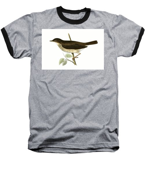 Thrush Nightingale Baseball T-Shirt by English School