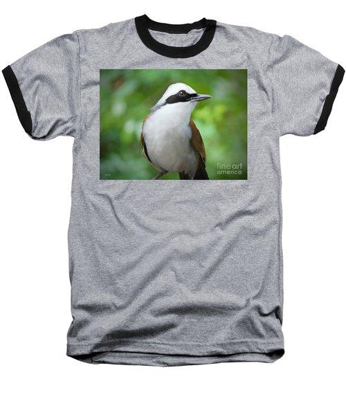 Thrush Pose Baseball T-Shirt by Judy Kay