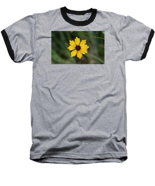 Tickseed Flower Baseball T-Shirt