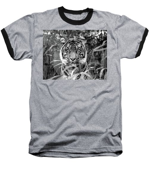 Tiger B/w Baseball T-Shirt