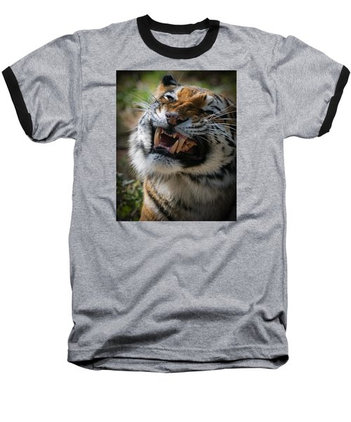 Tiger Faces 5 Baseball T-Shirt by Ernie Echols