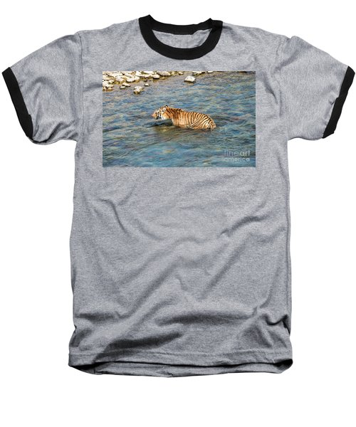 Tiger In The Water Baseball T-Shirt