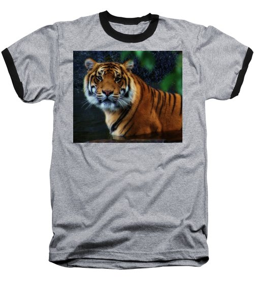 Tiger Land Baseball T-Shirt