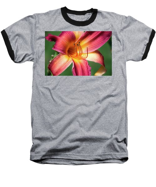 Tiger Lily Close Up Baseball T-Shirt