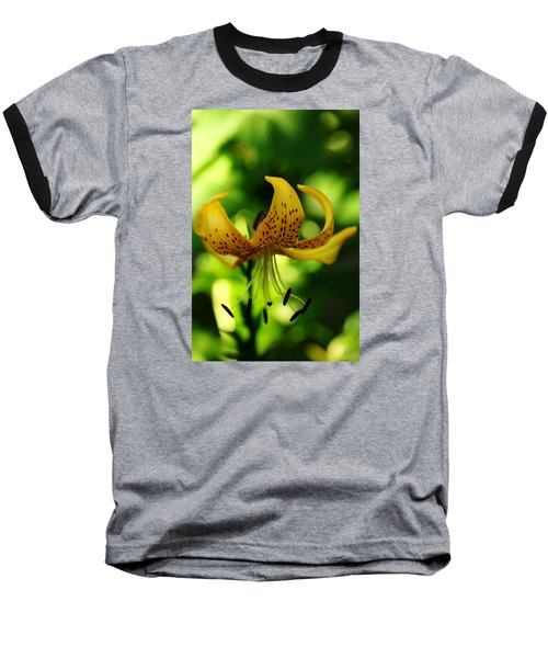 Tiger Lily Baseball T-Shirt by Debbie Oppermann
