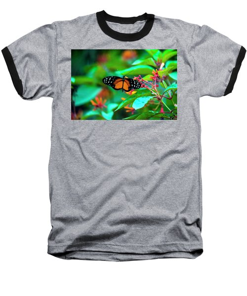 Tiger Longwing Butterfly Baseball T-Shirt by David Morefield