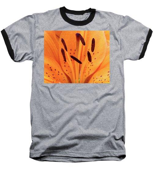 Tiger Macro Baseball T-Shirt