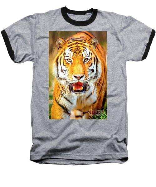 Tiger On The Hunt Baseball T-Shirt by David Millenheft