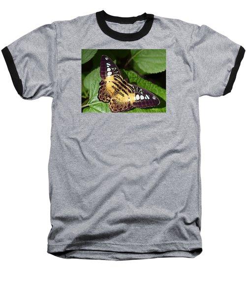 Tiger Print --- Clipper Butterfly Baseball T-Shirt