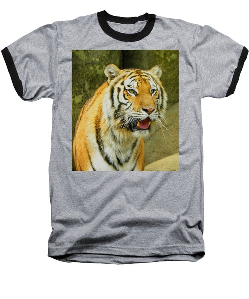 Baseball T-Shirt featuring the photograph Tiger Stare by Sandi OReilly