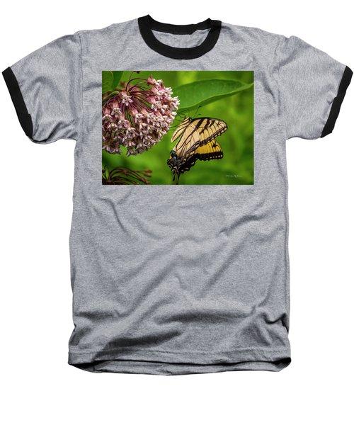 Tiger Swallowtail #210 Baseball T-Shirt