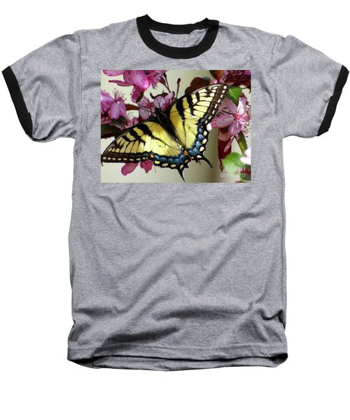 Tiger Swallowtail Butterfly Baseball T-Shirt