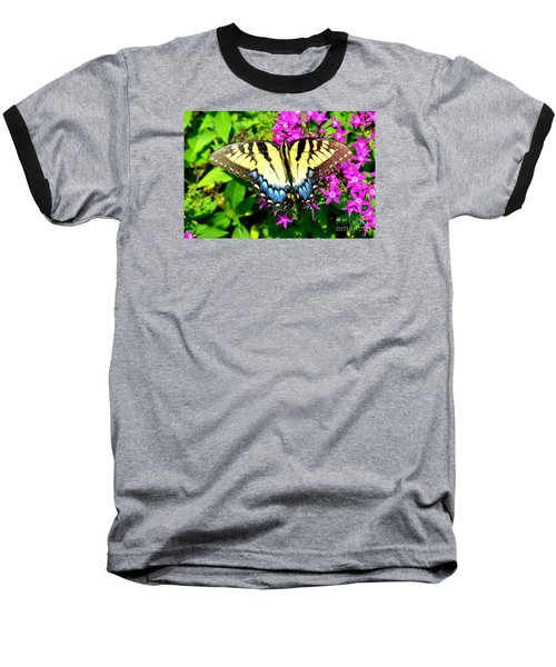 Tiger Swallowtail Baseball T-Shirt by Lew Davis