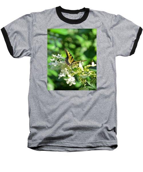 Tiger Swallowtail  Baseball T-Shirt by Nancy Patterson