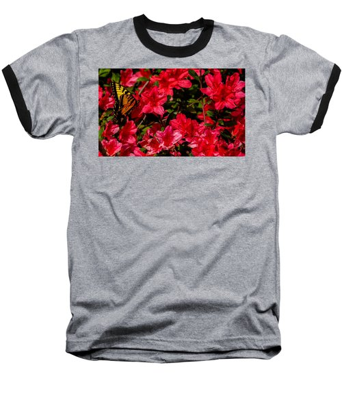Tiger Swallowtail On A Red Azalea Baseball T-Shirt by John Harding