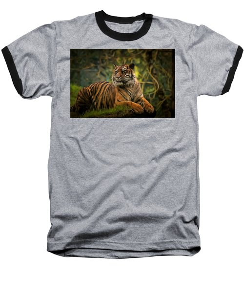 Baseball T-Shirt featuring the photograph Tigers Beauty by Scott Carruthers