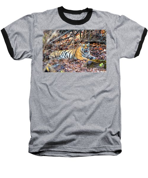 Tigress In The Woods Baseball T-Shirt by Pravine Chester