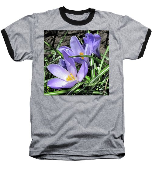 Time For Crocuses Baseball T-Shirt