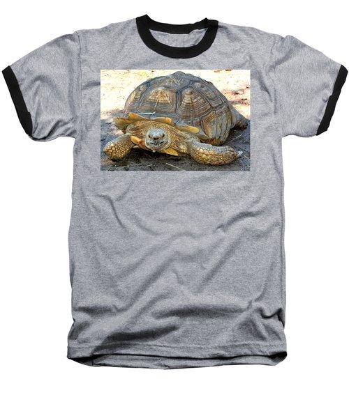 Timothy The Giant Tortoise Baseball T-Shirt