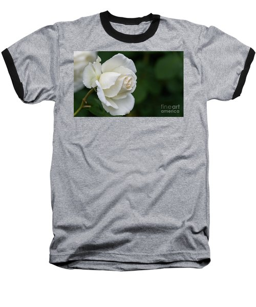 Tineke Rose 2 Baseball T-Shirt