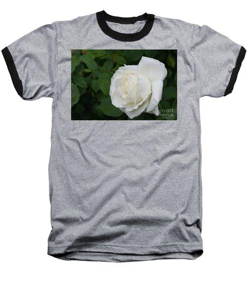 Tineke Rose 3 Baseball T-Shirt