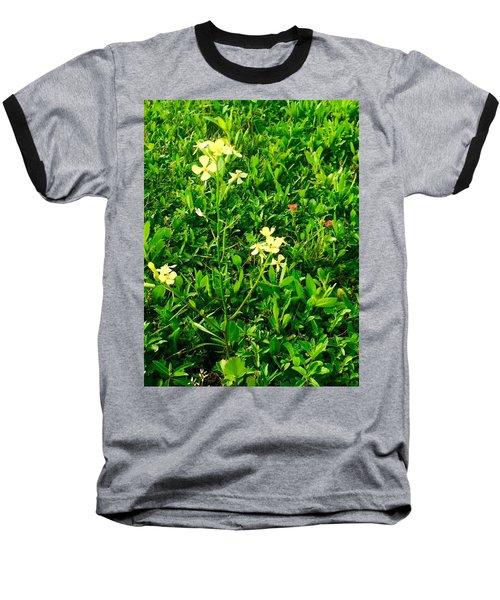 Tiny Beauties Baseball T-Shirt