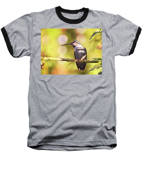 Tiny Bird Upon A Branch Baseball T-Shirt