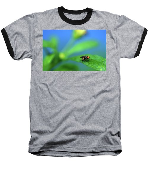 Tiny Fly On Leaf Baseball T-Shirt