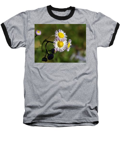 Tiny Little Weed -2- Baseball T-Shirt