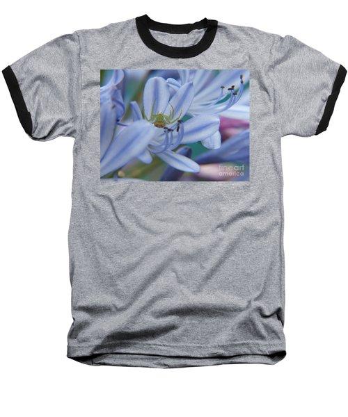 Tiny Spider Baseball T-Shirt by Trena Mara