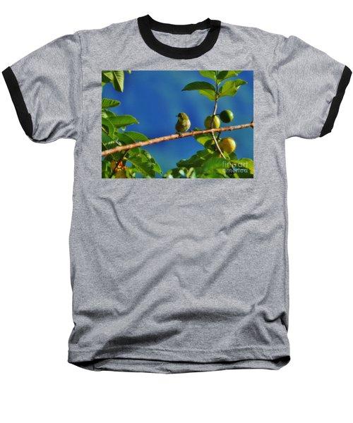 Tiny White Eye And Guava Baseball T-Shirt