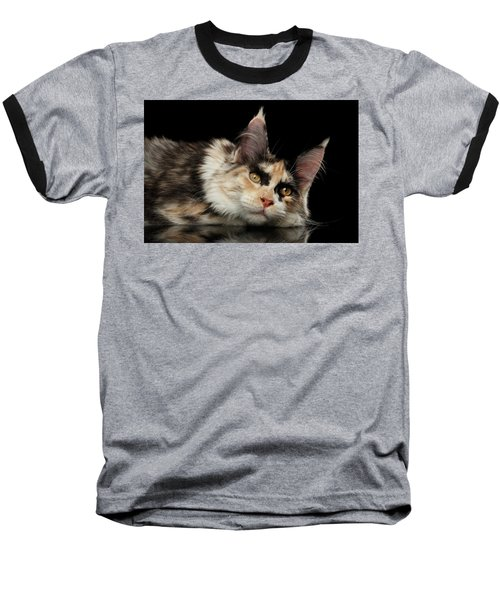 Tired Maine Coon Cat Lie On Black Background Baseball T-Shirt