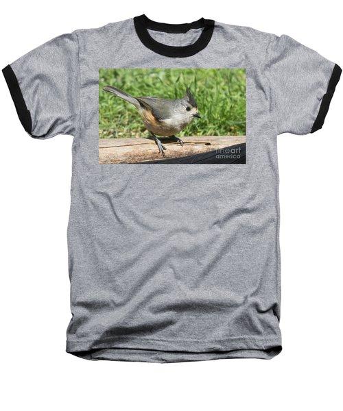 Titmouse Close Up Baseball T-Shirt