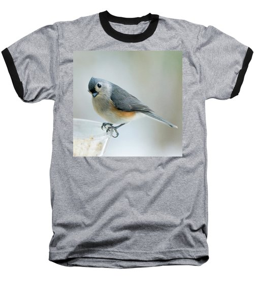 Titmouse With Walnuts Baseball T-Shirt