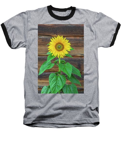 To Love And Be Loved Is To Feel The Sun From Both Sides.  Baseball T-Shirt