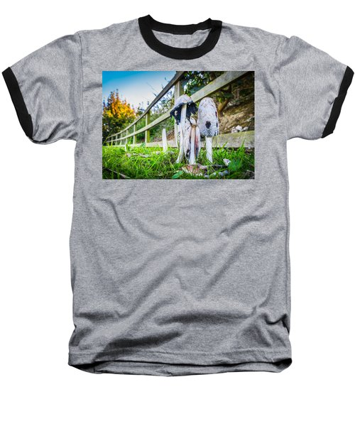 Toadstools. Baseball T-Shirt