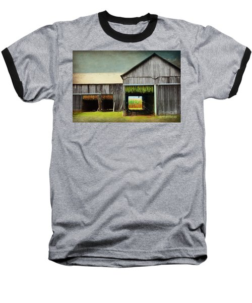 Tobacco Drying Baseball T-Shirt